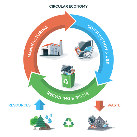 Vector illustration of circular economy showing product and material flow on white background with arrows. Natural resources are taken to manufacturing. After usage product is recycled or dumped. Waste recycling management concept. Product life cycle.