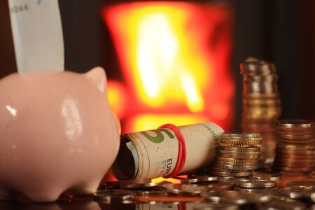 holzbriketts: Austerity heating in the fireplace, saving money in a piggy bank