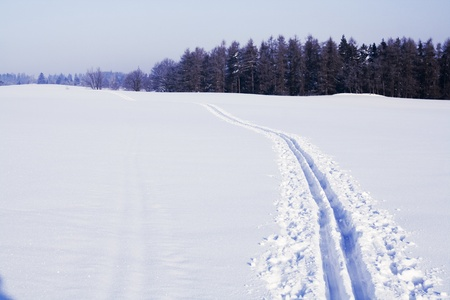 Ski track on snow field in beautiful sunny day