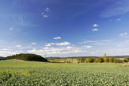 Autumn landscape with green fields and blue sky Stock Photo