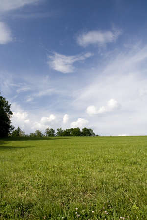 Beautiful spring landscape with blue sky and green field