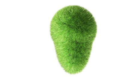 Green grass object isolated on white
