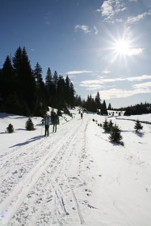 Nordic skiing in the mountains