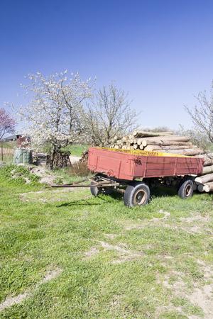 Spring rural landscape in village