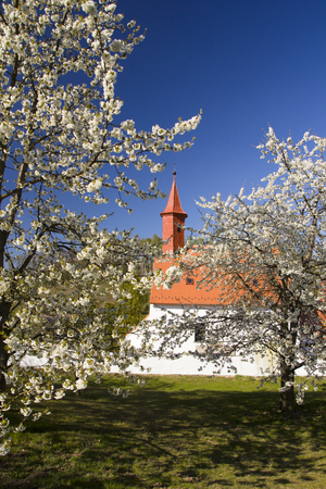 Spring rural landscape in village 写真素材 - 122583054