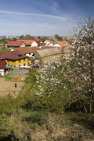 Spring landscape with roofs and trees background Reklamní fotografie