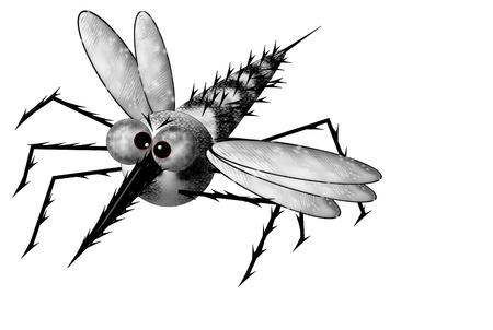 Mosquito in flight Stock Photo - 12092557