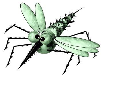 Mosquito in flight  Stock Photo