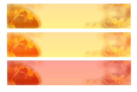 pastel banners photo