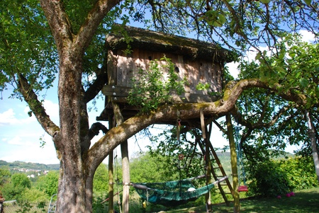 Tree house in the apple tree photo