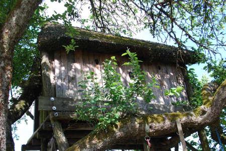 hobby hut: Tree house in the apple tree