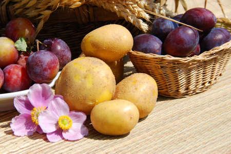 autumn motif: harvest time Stock Photo