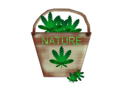 Natural fiber hemp sustainability Stock Photo - 12633415