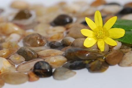 Feng Shui Stones photo