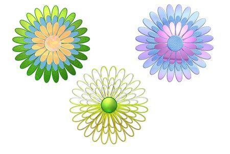 printing proof: Graphics Gerbera Cut Flower