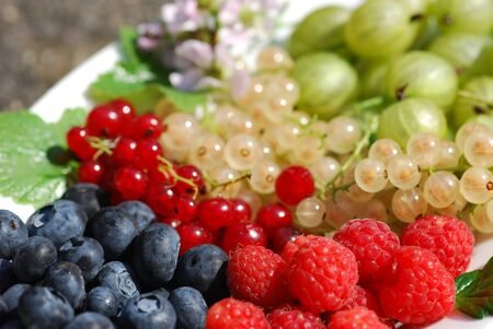 organically: Variety of organically grown berries