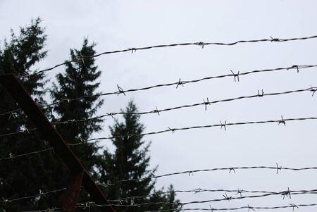 strips away: A walk along the old GDR border