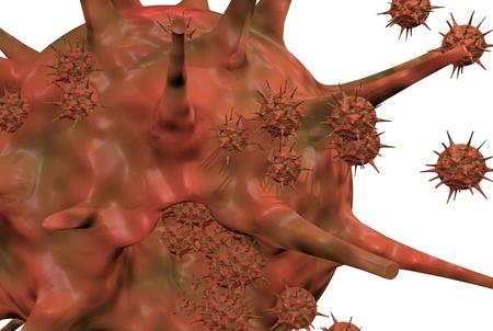 flu virus: Investigaci�n virus de la gripe