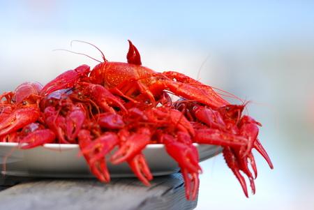 Crayfish Swedish specialty