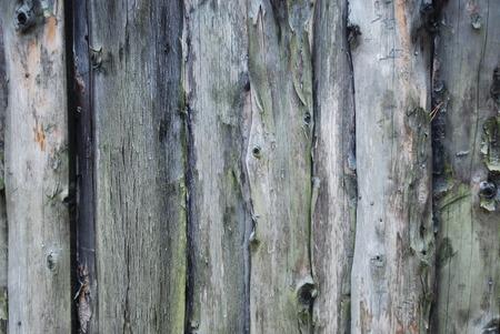 holzvert�felung: antike Holzverkleidung mit Patina