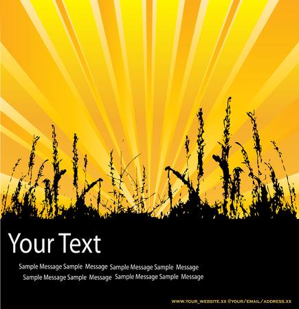 flier: Sunburst Message