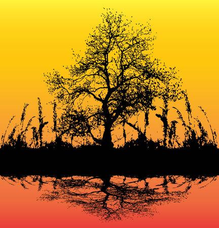 flier: Dawn Tree Background Illustration
