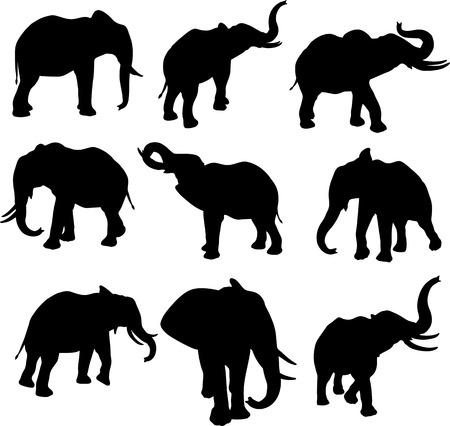 Słoń Silhouettes Ilustracje wektorowe