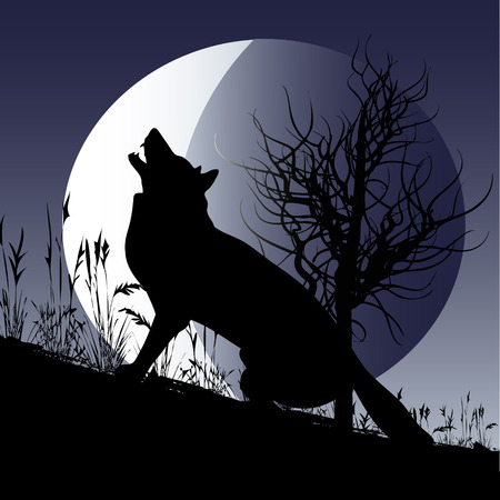 Wolf Moon Stock Vector - 5453079