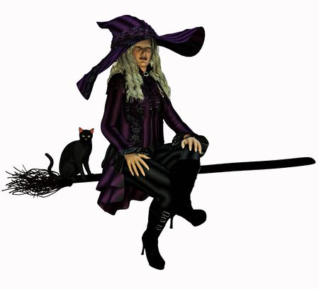 broomstick: Witch on her broomstick