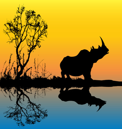Rhinoceros Background Vector