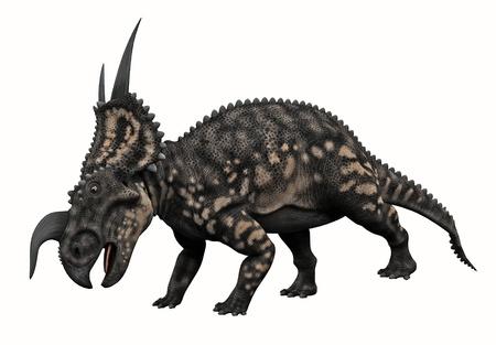 horned: Horned Dinosaur  Stock Photo