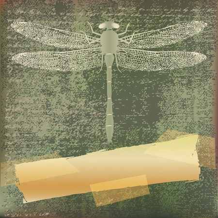 antiqued: Dragonfly grunge paper background  Illustration