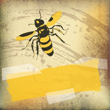 antiqued: Wasp Paper Background