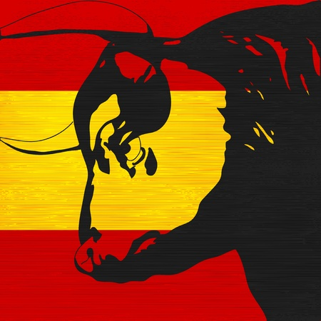 bullfights: Spanish Bull