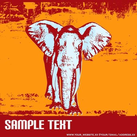 Elephant Grunge Background Vector