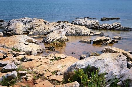 Coast with stones