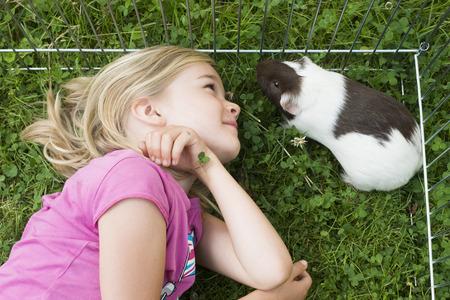 cavie: Ragazza del bambino all'interno del paddock rilassante e giocare con le sue cavie fuori sul prato verde in giardino. Archivio Fotografico