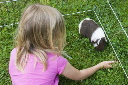 adentro y afuera: La muchacha del niño en el prado que relaja y juega con sus conejillos de indias al aire libre en el césped de hierba verde en el jardín.