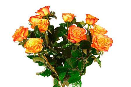 rosas naranjas: Hermosas rosas anaranjadas flores en el florero Foto de archivo