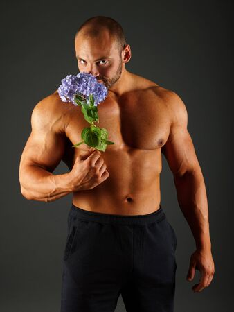 Muscular man sniffs a beauty blue hydrangea on gray background