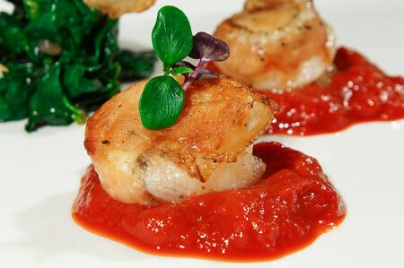 tomato puree: Poached salmon with spinach and tomato puree with herbs close up