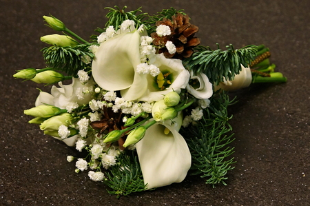 Christmas decoration with cone, spruce branches and white calla