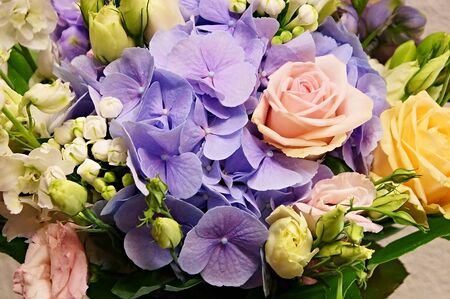 Bouquet of flowers close-up with hydrangea Standard-Bild
