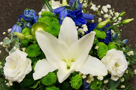 Close up christmas decoration with spruce branch, white lily, rose and blue bells Standard-Bild