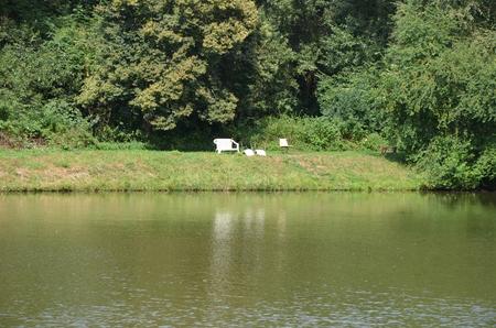 Venkovská idyla u rybníka