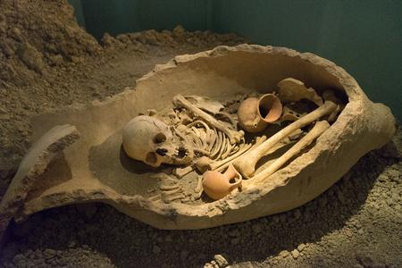 Skeleton in a pitcher Banco de Imagens
