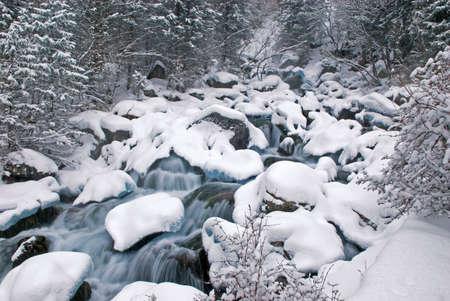 murmur: Winter mountain creek during snowfall