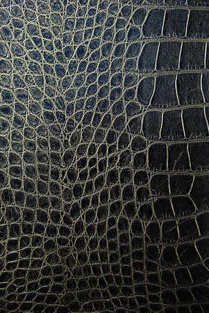 lagartijas: Fondo de piel de serpiente