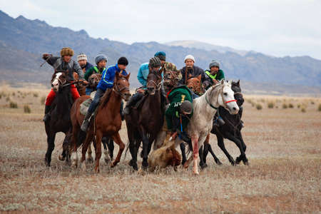 UST-KAMENOGORSK, KAZAKHSTAN - OCTOBER 4 : A traditional nomad game of �Kokpar� in action on October 4, 2009 in Ust-Kamenogorsk, Kazakhstan. Kokpar is played on horseback to carry dead goat carcass into a goal.