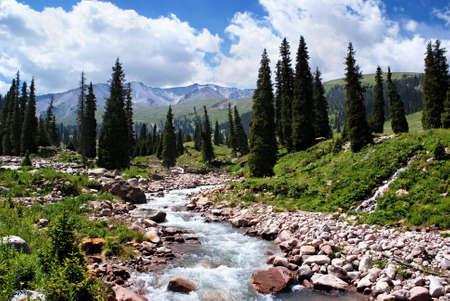 Montañas de Tian Shan de verano montaña Valle, Kazajstán,